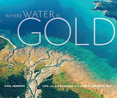 carl_johnson_where_water_is_gold_book