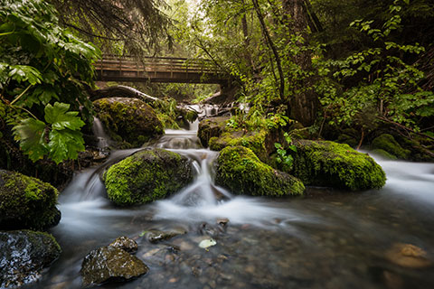 silky water cascading over mossy rocks under a bridge
