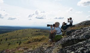 photographers near denali national park photographing wildlife - alaska photo tour