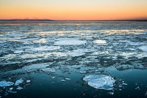 ice flows in cook inlet at sunset - winter photo tour