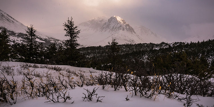 alpenglow on mountain peak in glen alps after snowstorm - winter photography tips