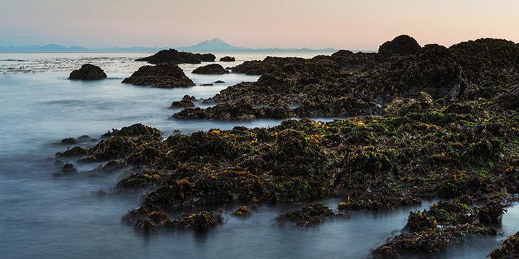 high tide at sunrise - seldovia, alaska
