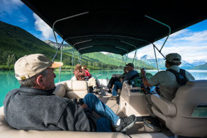 visitors bear viewing from covered pontoon boat on crescent lake - alaska brown bear
