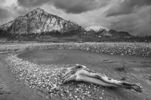 black and white mountain landscape - photo tips for home