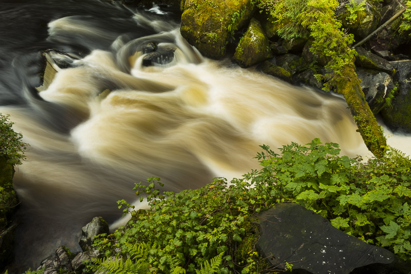 Anan Creek in southeast photo expedition